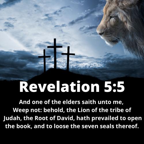 Revelation 5:5 KJV