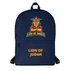 LOJ Blue School Backpack Bag